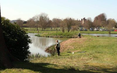 Welcome to Penshurst Park Fishery new website
