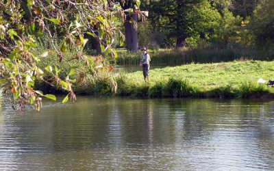The Penshurst Park Fishery open day