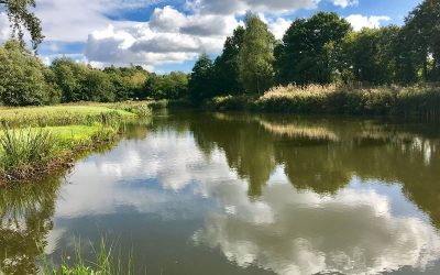 Penshurst Fly fishing Catch Report September 2019