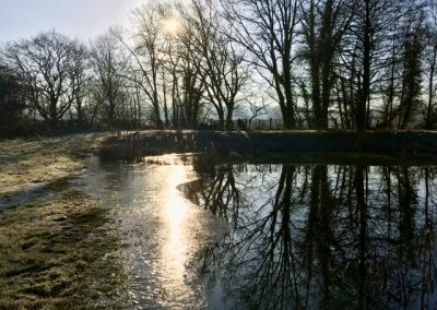 Penshurst Park trout Fishery in Winter