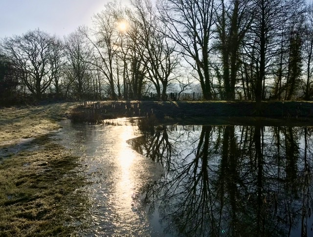 Penshurst Fly fishing Catch Report January 2020