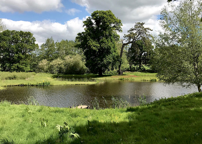 Fly Fishing in Kent - Penshurst Park Trout Fishery