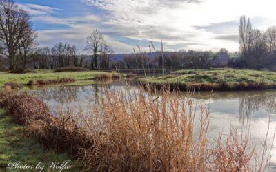 Penshurst fly fishing news & report December – 2020